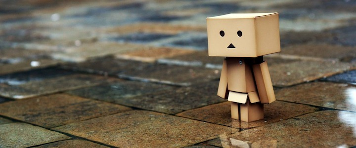 Danbo Amazon